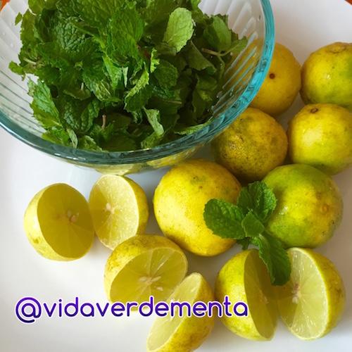Limonada con Hierbabuena2
